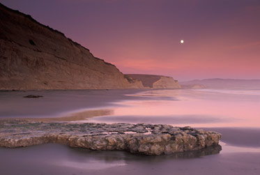 pt_reyes_photography_workshops_landscape_close-up_photography_norther_california_san_francisco_bay_area_james_katz